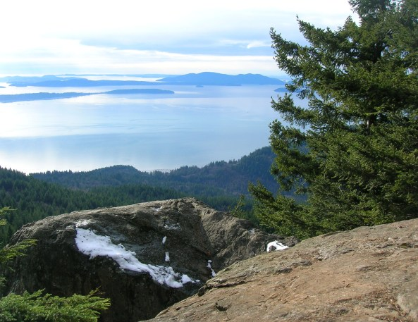 View_From_Oyster_Dome